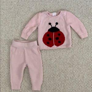 Hanna Andersson Ladybug Sweater Set